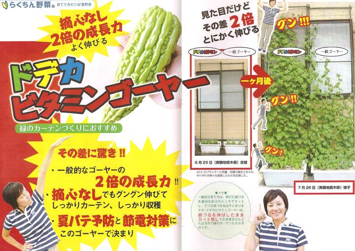 ソムリエ野菜:ドデカビタミンゴーヤ