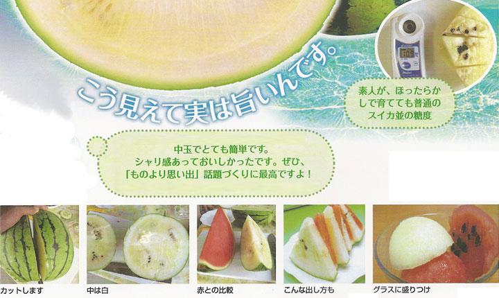ソムリエ野菜:白いすいか、究極の食感と感動の白!銀世界