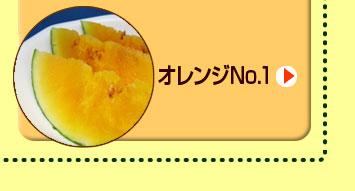 オレンジno.1