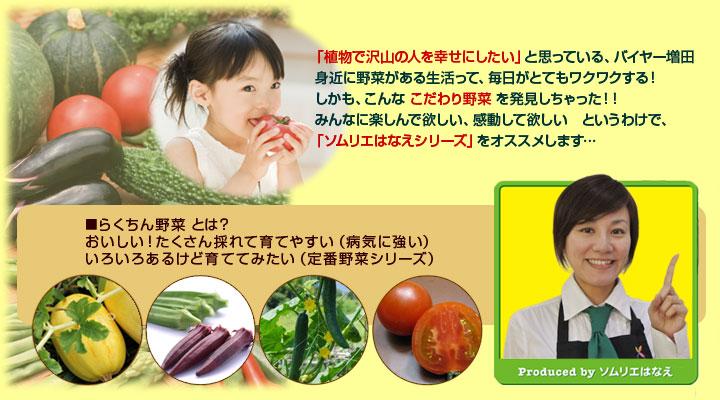 身近に野菜がある生活って、毎日がとてもワクワクする!こんな こだわり野菜 を発見しちゃった!「ソムリエはなえシリーズ」をオススメします